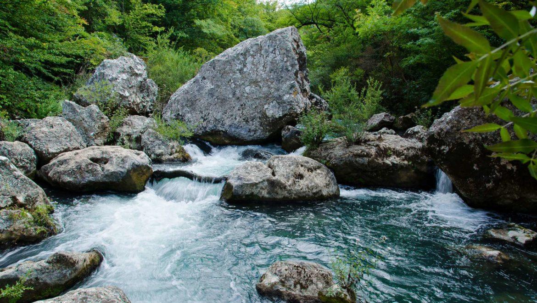 Прогулка к реке Чёрная